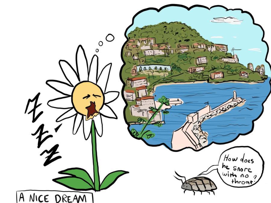 Draw Mr. Flower having a nice dream